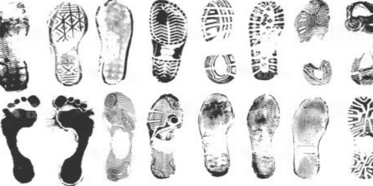 Криминалистическая экспертиза отпечатков ног и ботинок