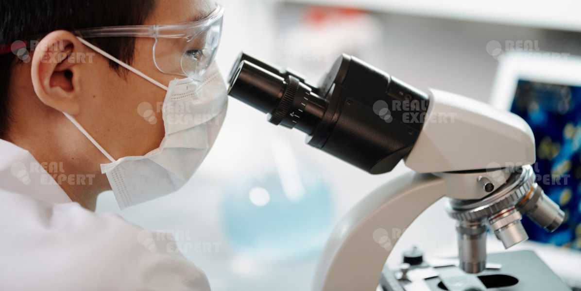 Проведение молекулярно-генетической экспертизы